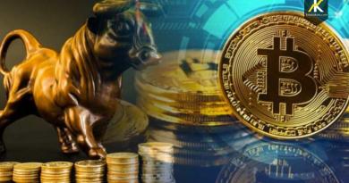 Keizer Report 'un Sahibi olan Mark Keizer'in Attığı Twette Bitcoinin Türkiye İçin Belirleyici Bir Faktör Olacağını Belirtiyor